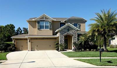 Wesley Chapel Single Family Home For Sale: 27768 Autumn Breeze Circle