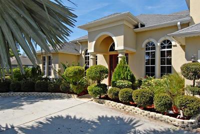 Orlando Single Family Home For Sale: 2650 Bancroft Boulevard