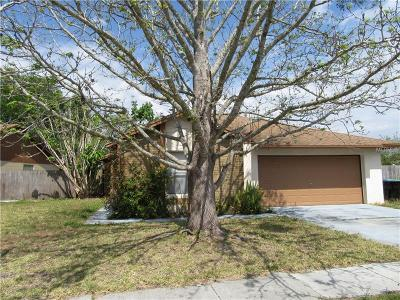 Orlando Single Family Home For Sale: 2139 Dill Drive