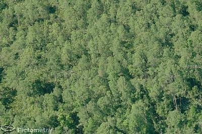 Orlando Residential Lots & Land For Sale: 11274 Fangorn Road