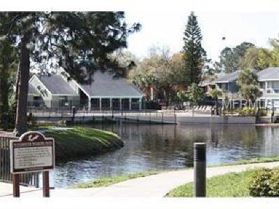 Orlando Condo For Sale: 5785 Windhover Drive #C01