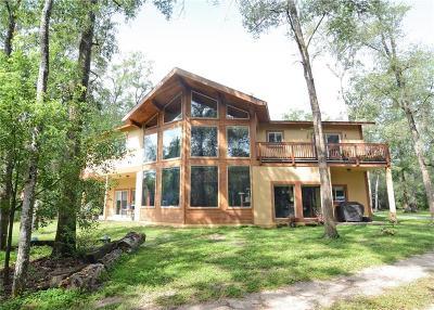 Sanford Single Family Home For Sale: 1720 Emmett Avenue
