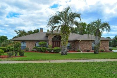 Debary Single Family Home For Sale: 3035 Annez Way