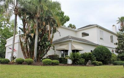 Ormond Beach Single Family Home For Sale: 24 Bay Pointe Drive