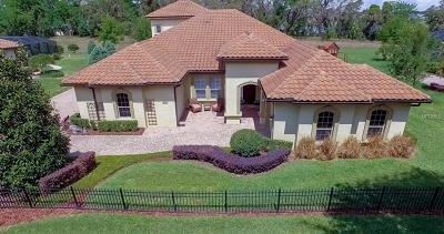 Gotha Single Family Home For Sale: 9645 Lake Hugh Drive