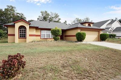 Minneola Single Family Home For Sale: 875 High Pointe Circle