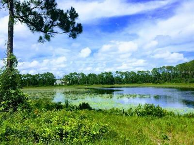 Lake County, Seminole County, Volusia County Residential Lots & Land For Sale: 2902 Cardinal Street