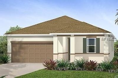Lake County, Orange County, Osceola County, Seminole County Single Family Home For Sale: 2630 Interlock Drive