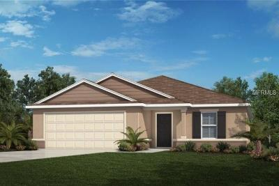 Lake County, Orange County, Osceola County, Seminole County Single Family Home For Sale: 1580 Scarbrough Abby Place