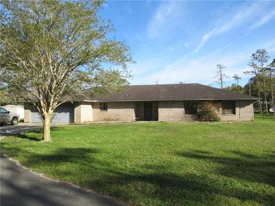 Ormond Beach Single Family Home For Sale: 2380 Lipizzan Trail