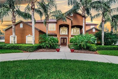 Orlando Single Family Home For Sale: 5236 Timberview Terrace