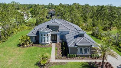 Lake County, Orange County, Osceola County, Seminole County Single Family Home For Sale: 14430 Bella Lane