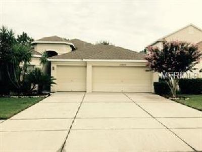 Land O Lakes Single Family Home For Sale: 23636 Estero Court