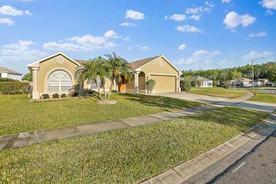 Orlando Single Family Home For Sale: 10656 Fairhaven Way