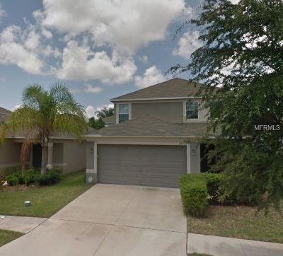 Ruskin Single Family Home For Sale: 7723 Maroon Peak Drive