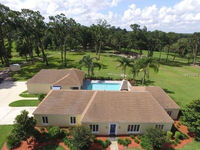 Volusia County Single Family Home For Sale: 1700 Whippoorwill Lane