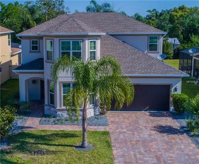 Saint Cloud Single Family Home For Sale: 5211 Villa Rosa Avenue