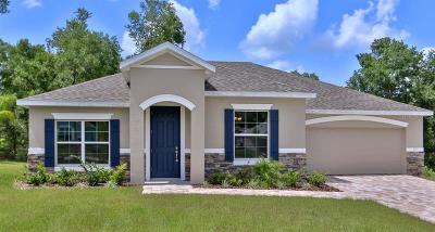 Deland Single Family Home For Sale: 119 Park Hurst Lane