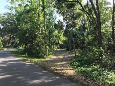 Debary Residential Lots & Land For Sale: 463 River Drive