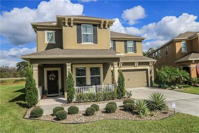 Seminole County Single Family Home For Sale: 8089 Pleasant Pine Circle
