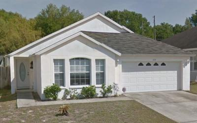 Valrico Single Family Home For Sale: 622 Wave Crest Circle