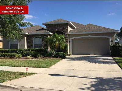 Orlando Single Family Home For Sale: 8424 Dover View Lane