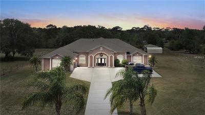 Saint Cloud Single Family Home For Sale: 3870 Kaiser Avenue