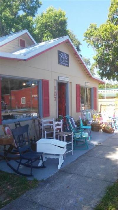 Fruitland Park Single Family Home For Sale: 107 W Berckman Street