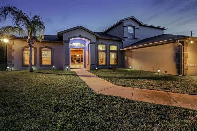 Orlando Single Family Home For Sale: 19326 Oakleaf Street