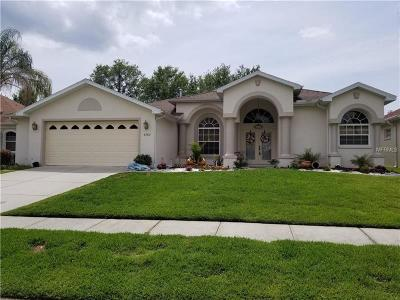Brooksville Single Family Home For Sale: 4289 Gevalia Drive