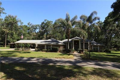 Deland Single Family Home For Sale: 717 Shane Drive