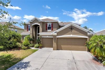 Saint Cloud Single Family Home For Sale: 3635 Daydream Place