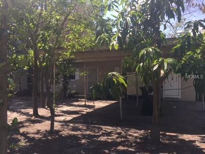 Orlando Single Family Home For Sale