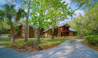 Winter Springs Single Family Home For Sale: 840 Dyson Drive