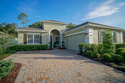 Deland Single Family Home For Sale: 169 Birchmont Drive