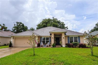 Mount Dora Single Family Home For Sale: 2109 Wolf Ridge Lane
