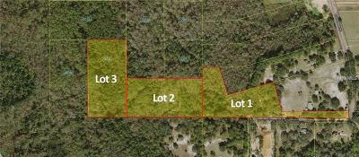Kissimmee Residential Lots & Land For Sale: 0 Goodman Road