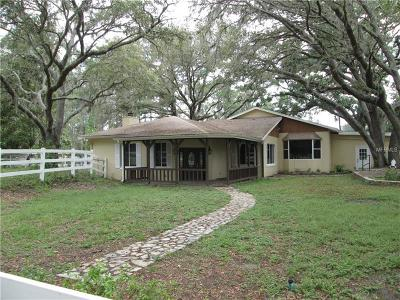 Astatula Single Family Home For Sale: 23324 County Road 561