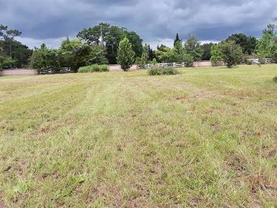 Orlando Single Family Home For Sale: 1916 Ranch Estate Drive