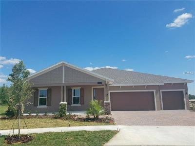 Single Family Home For Sale: 7612 Roma Dune Drive
