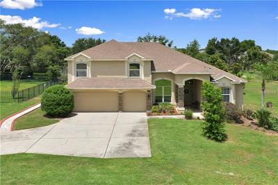 Apopka Single Family Home For Sale: 659 Grampian Court