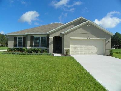 Eustis Single Family Home For Sale: 2713 Summerglen Lane