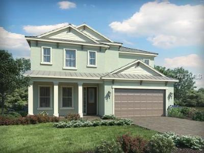 Tarpon Springs Single Family Home For Sale: 737 W Bayshore Drive