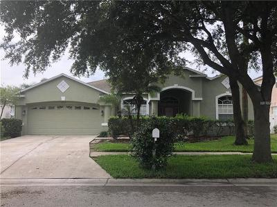 Valrico Single Family Home For Sale: 2837 Buckhorn Preserve Boulevard