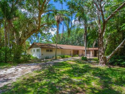 Lake County, Sumter County Single Family Home For Sale: 16627 Pablo Island Drive