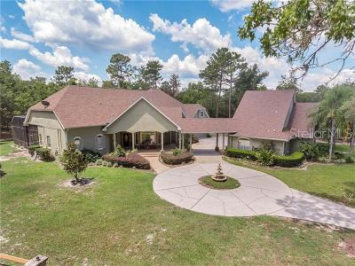Sanford Single Family Home For Sale: 6085 Feather Lane