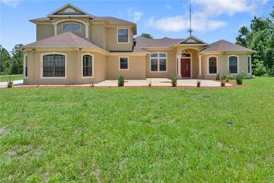 Orlando Single Family Home For Sale: 2843 Dallas Boulevard