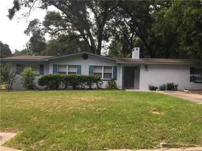 Mount Dora Single Family Home For Sale: 1240 East 5th Avenue