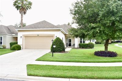 Leesburg Single Family Home For Sale: 25047 Cypress Pond Court