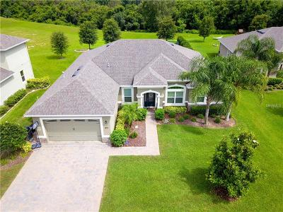 Clermont Single Family Home For Sale: 12348 Hammock Hill Drive